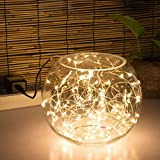 Kohree 100 Micro LEDs string Light on 33ft Long Ultra Thin String Copper Wire - Decor Rope Light Powered by UL certified 3V Power Adapter for Weddings - Garden - Patio - Tree - Party - Xmas