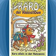 Karo allein in der Metzgerei (Karo der Kleinstlöwe 4) Hörspiel von Helmut Jost Gesprochen von: Rainer Domke