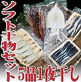 干物 セット 5品 山形県産 無添加(ハタハタ ホッケ スルメイカ 柳カレイ イワシ) 一夜干し ひもの 冷凍