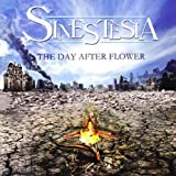 Day After Flower by Sinestesia (2009-12-04)