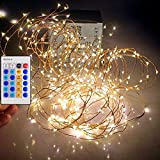 Qualizzi Starry Lights 40 Feet Xx-Long / 240 Leds with Remote Control Dimmer. Warm White Lights on Copper Wire String. Fading Fairy Effects. White 110/220v Pw Adaptor