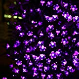 LE Solar Fairy Lights, 7 Meters, Waterproof, 50 LEDs, 1.2 V, Violet, Portable, with mild Sensor, Outdoor Bloosom String Lights, recommended for Christmas, Wedding, Party