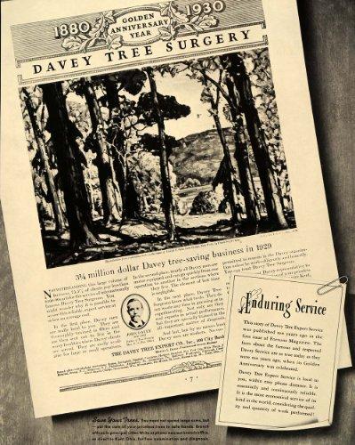 1940 Ad Davey Tree Expert Surgery Frank Swift Chase - Original Print Ad
