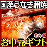 お中元ギフト【国産】炭火焼うなぎ蒲焼1尾 特大サイズ 鹿児島県産