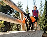 Ruffwear 50101-815LL1 Hunderucksack, Large, campfire orange -