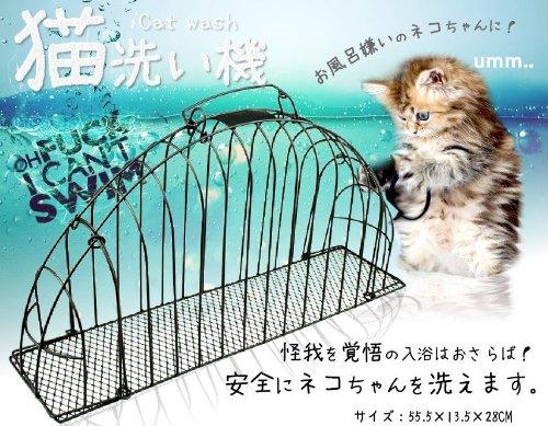 怪我をせずに猫のお風呂 水嫌い 子猫 キャットウォッシュ