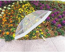 Barton Outdoor Clear 48quot Umbrella with Black Trim