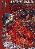 echange, troc Kriton Kunz - Le serpent des blés : Pantherophis guttatus (elaphe guttata)