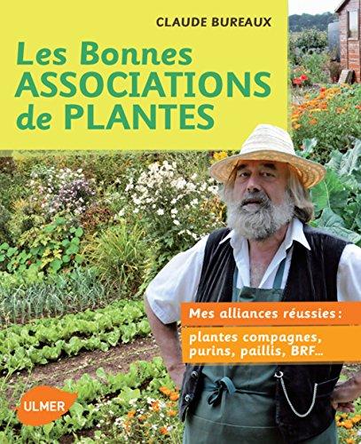 les-bonnes-associations-de-plantes-mes-alliances-reussies-plantes-compagnes-purins-paillis-brf-