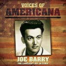Voices Of Americana: The Loneliest Boy In Town