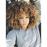 ForQueens Afro Wigs For Black Women Brown Mixed Blonde Kinky Curly Full Wigs Synthetic Heat Resistant Wigs For African Women