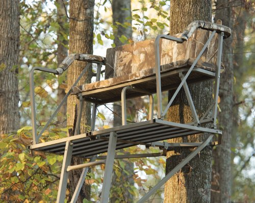 Summit Treestands 174 Double Barrel Ladder Stand 2 Man