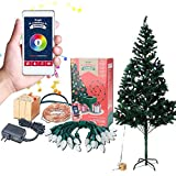 Airgoo® Led Colored Christmas Tree Lights Smartphone Control with 33ft 100pcs Warm White String and 25pcs C7 for Indoor Christmas Tree Ornament - APP Control - Bluetooth Connect