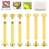 Hilitchi 50-Sets M5 Brass Plated Phillips Chicago Screw Posts Binding Screws Assortment Kit for Scrapbook Photo Albums Binding, Leather Repair - Gold (M5 x 45mm-50Sets) (Color: M5 x 45mm-50Sets)