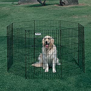 Precision Pet Products Precision Ultimate Dog Exercise Pen - Black, Steel, 30 in.