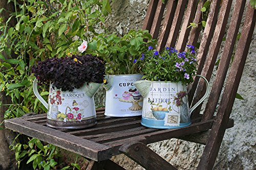 Janazala Small Flower Pots Indoor Decorative, Indoor Flower Pots, Set of 3 (Metal, Colorful) 2