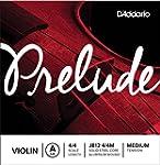 D'Addario Prelude 4/4 Scale Medium Te...