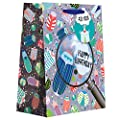Jillson Roberts Recycled Medium Gift Bags, Birthday Beetle, 6-Count (MT198)