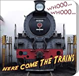 Whooo... Whooo... Here Come the Trains (Rourke Board Books)