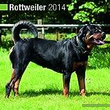 Avonside Publishing Rottweiler 2014 (Calendar 2014)