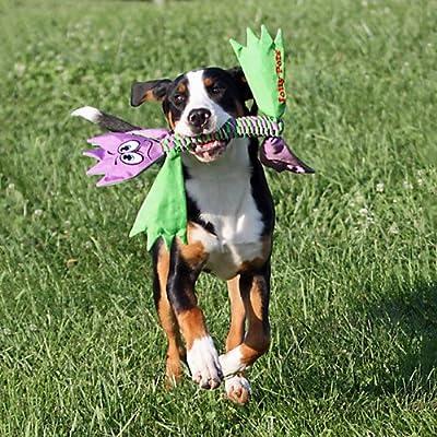 Jolly Pets Flatheads Dog Toy