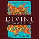 The Divine Commodity: Discovering a Faith Beyond Consumer Christianity Audiobook by Skye Jethani Narrated by Tom Casaletto