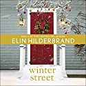 Winter Street Audiobook by Elin Hilderbrand Narrated by Laurel Lefkow