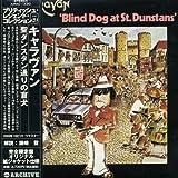 Blind Dog at St Dunstans by Caravan (2006-09-12)