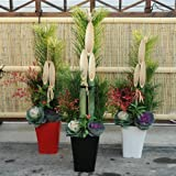 迎春:天然素材の門松(80cm)*鉢:黒色