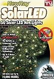 Solar Powered White Net Lights