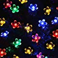 Amzdeal Beautiful 50Led Solar Powered Fairy Lights Outdoor/Outside String Lights Decorative Lights Party Lights Christmas Lights IP55 Waterproof for Garden, Lawn, Patio, Courtyard, Party, Wedding and Festival (Multi Colour)
