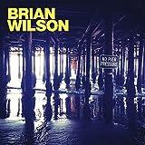 No Pier Pressure Brian Wilson