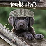 Hounds in Hats 2016 (Square)