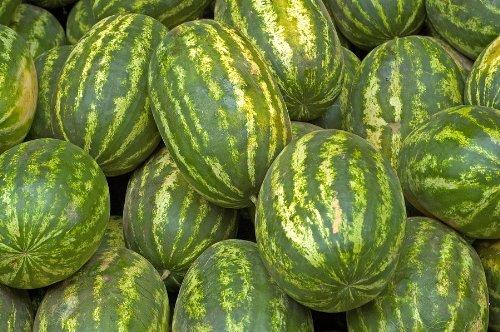 Striped Klondike Watermelon Seeds (Watermelon Rind Juice compare prices)
