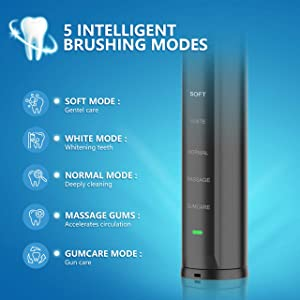 Electric Toothbrush, Sonic Whitening Toothbrush for Adults with UV Sanitizer Case,6 Replacement Heads,5 Modes Waterproof Rechargeable Toothbrushes, 45 Days Long Battery,2 Min Timer for Travel and Home