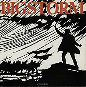 Culture killed the native (1989) [Vinyl LP]