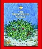 The Sheltering Cedar