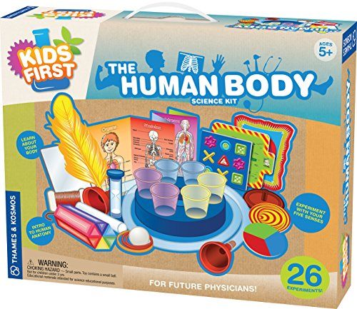 Kids First The Human Body Kit (Human Body Anatomy Model compare prices)