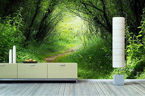 wandbilderxxl vlies fototapete waldweg 300x200cm hochwertige tapete in 6 verschiedenen. Black Bedroom Furniture Sets. Home Design Ideas