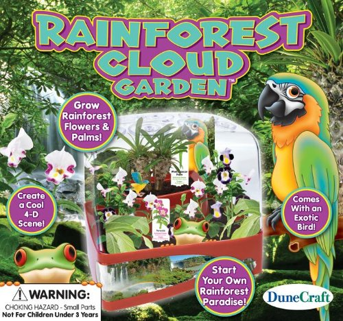 Dunecraft Rainforest Cloud Garden Science Kit - 1