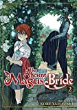 Image of The Ancient Magus' Bride: Vol. 2