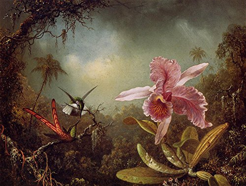 ycc-orchid-with-two-hummingbirds-martin-johnson-heade-canvas-art-print-size-24x36-non-canvas-poster-