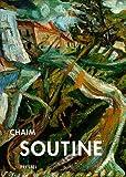 Chaim Soutine: An Expressionist in Paris (3791319329) by Kleeblatt, Norman L.