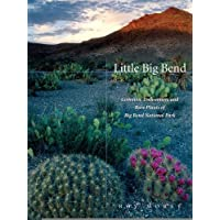 Little Big Bend: Common, Uncommon, and Rare Plants of Big Bend National Park (Grover E. Murray Studies in the...