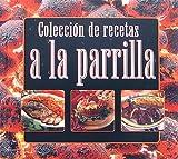 Coleccion De Recetas A La Parrilla (Spanish Edition) (0785380973) by Equipo Editorial