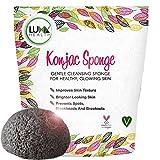 by Konjac Sponge by Luxx Health (144)Buy new:  $17.99  $10.00