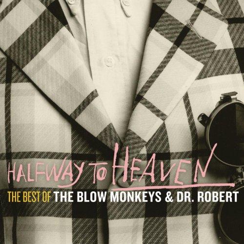 halfway-to-heaven-the-best-of-the-blow-monkeys-dr-robert-3-cd