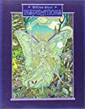 William Stout: Inspirations (193386527X) by Stout, William