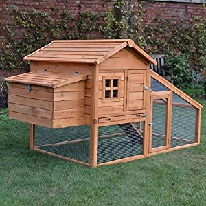 poulailler 1 a 2 poules poulailler. Black Bedroom Furniture Sets. Home Design Ideas