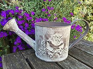 Small Decorative Bird Metal Watering Can